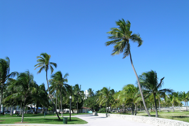 About The Miami Beach Boardwalk